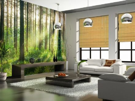 Sunset in the Woods non woven wallpaper